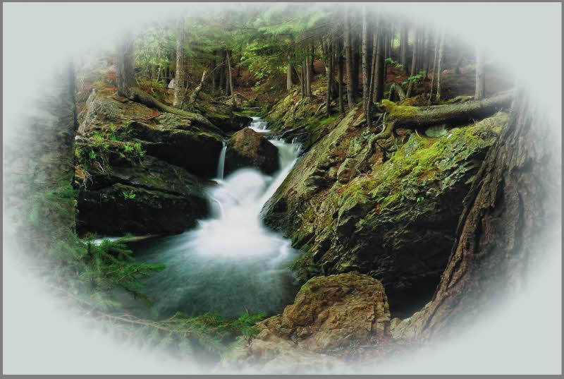 Image result for vignette photography