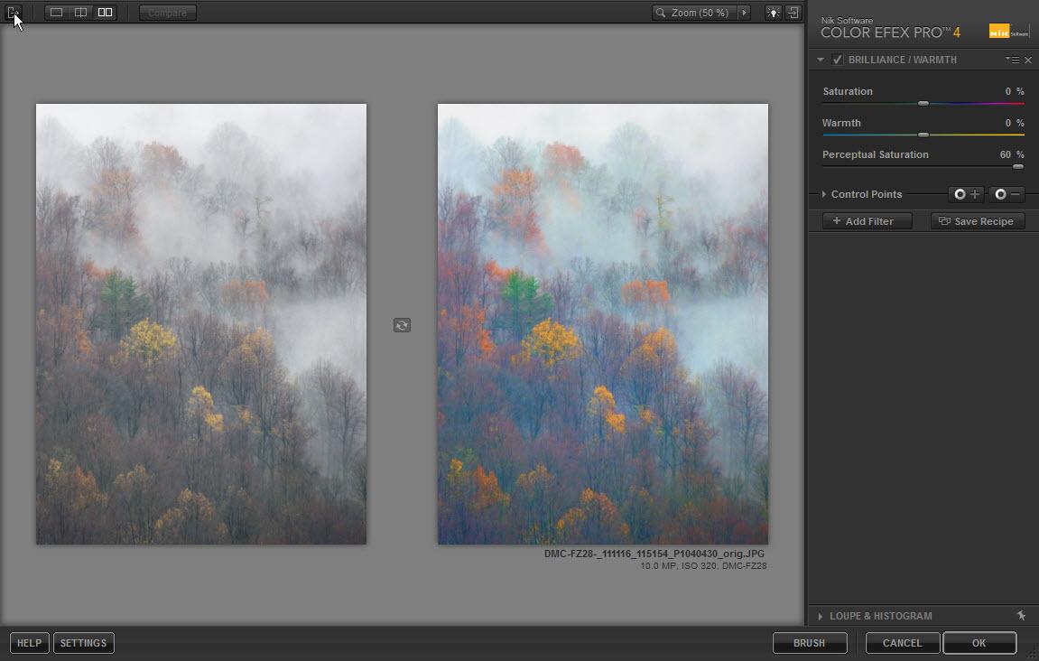 color efex pro brilliance warmth filter photography improvement. Black Bedroom Furniture Sets. Home Design Ideas