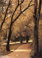 Gustave Caillebotte yerres-path-through-the-old-growth-woods-in-the-park 1878
