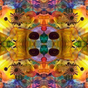 as Symmetry in Glass