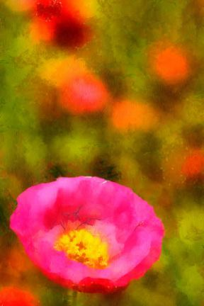 00720_DSC1454_nx_resize_DAP_Watercolor-Monetblog