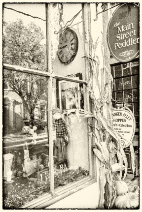 Lots of little shops like this on Main Street