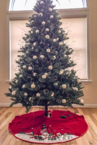 christmas_645 PRO Mk III for Apple iPhone 6 Plus_151213_102314_IMG_2539