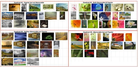 4 quadrant images