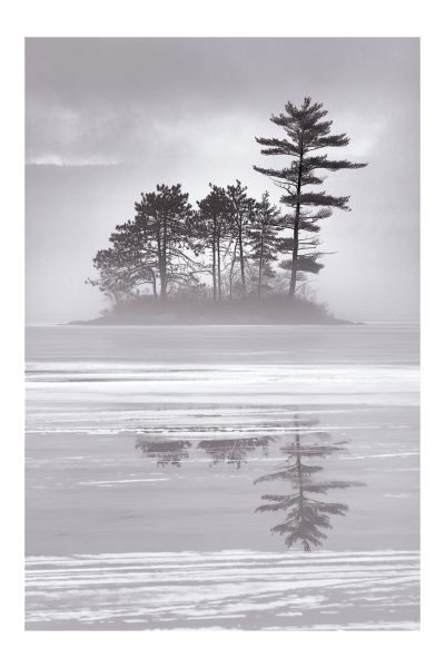 pine island final sharp